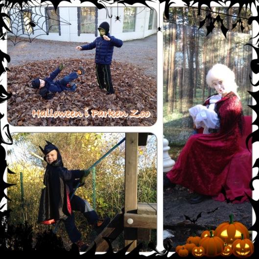 Halloween i Parken Zoo