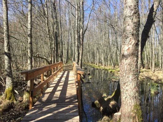 Bro på Skäret