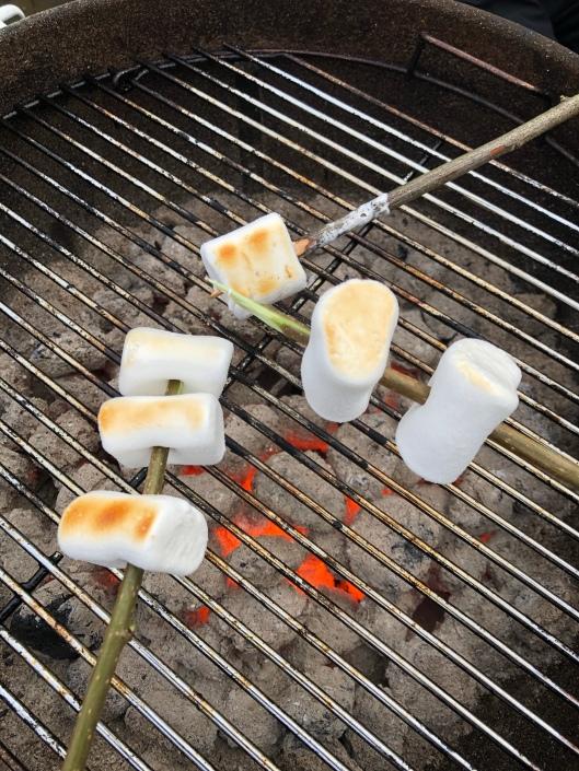 Marshmallows på grillpinnar över glöd